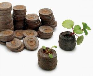Peat-Pellets-Seed-Sol-Bloc-Plantation-de-depart-Bouchons-Semis-Pour-debut-12pc