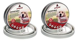 2-PACK Petpirit Flea & Tick Adj. Prevention Collar for Dogs, One Size Fits All