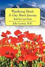 Wandering Heart: A Gay Man's Journey: Book Two: Lost Hearts by John Loomis MD (Paperback / softback, 2012)