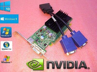 HP Compaq dc7700 dc7800 dc7900 Microtower Dual Monitor VGA