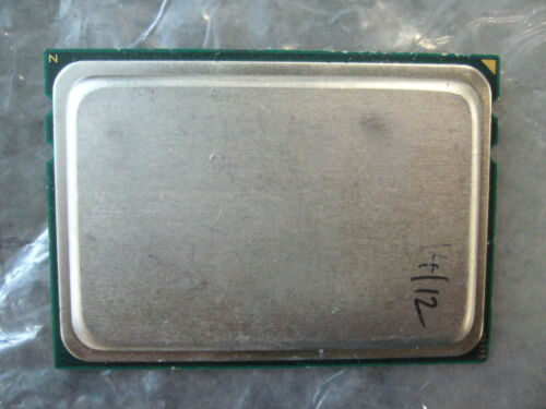 Vintage AMD CPU non-Marked Sample Socket G34 RARE for collector