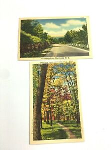 2-Sherburne-NY-1950-039-s-Vintage-Postcards-Upstate-NY-Road-and-Trail-View-Fall
