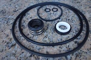 Kit46 Jacuzzi Magnum Swimming Pool Pump Seal Gasket O