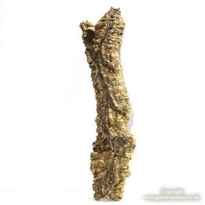 Large-cork-bark-piece-37L-x-10W-x-3D-cm-Air-plants-or-pet-terrariums-WYSIWYG