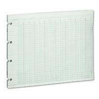 Wilson Jones Accounting Sheets 24 Column 9-1/4 X 11-7/8 100 Loose Sheets/pack