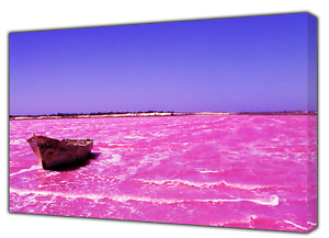 Diplomatique New Pink Lake Photo Print On Wood Framed Canvas Picture Wall Art Decoration-afficher Le Titre D'origine