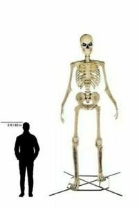 Halloween Giant 12 Ft Skeleton Decoration | eBay