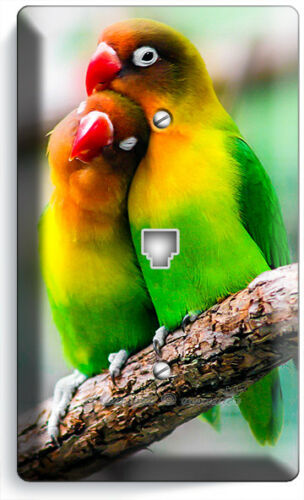 COLORFUL LOVEBIRDS PARROTS LOVE BIRDS LIGHT SWITCH OUTLET WALL COVER ROOM DECOR