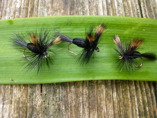 BLACK HUMPY Trocken-Fliege Bachforelle Regenbogenforelle Äsche Döbel Trout 4 St