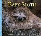 Baby Sloth by Aubrey Lang (Paperback)