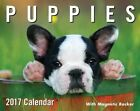 Puppies 2017 Mini Day-to-day by Andrews McMeel Publishing Calendar UXX C17