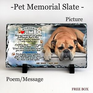 LPT12 Personalised Engraved Pet Memorial or Celebration Plaque Various Sizes.
