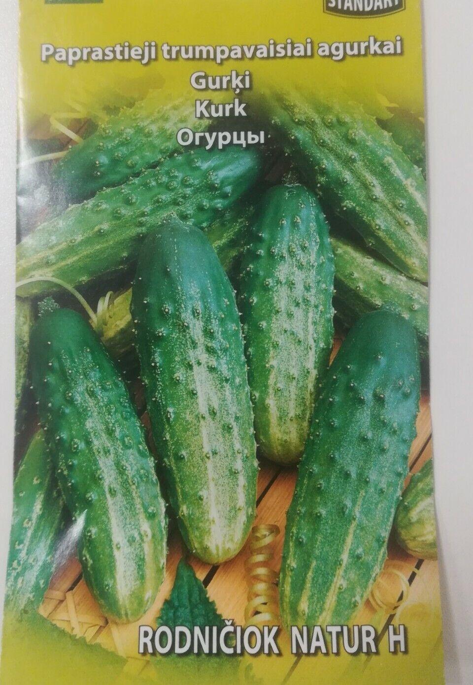 Cucumber seeds *Rodnichok Natur H*Gherkin Tolerant to mildew & weather stress *