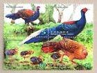 Taiwan 2014 Swinhoe Bird Conservation stamps 藍腹鷴 Animal