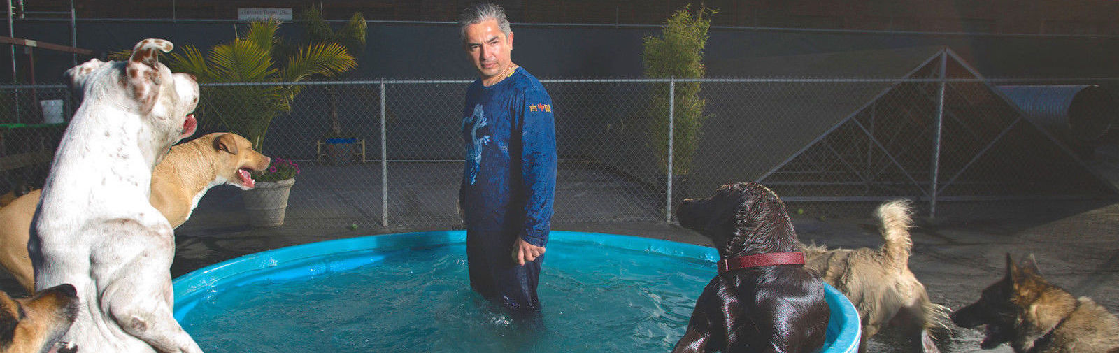 Cesar Millan - The Dog Whisperer Tickets (Rescheduled from January 14)