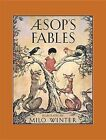 Aesop's Fables by Fall River (Hardback, 2013)