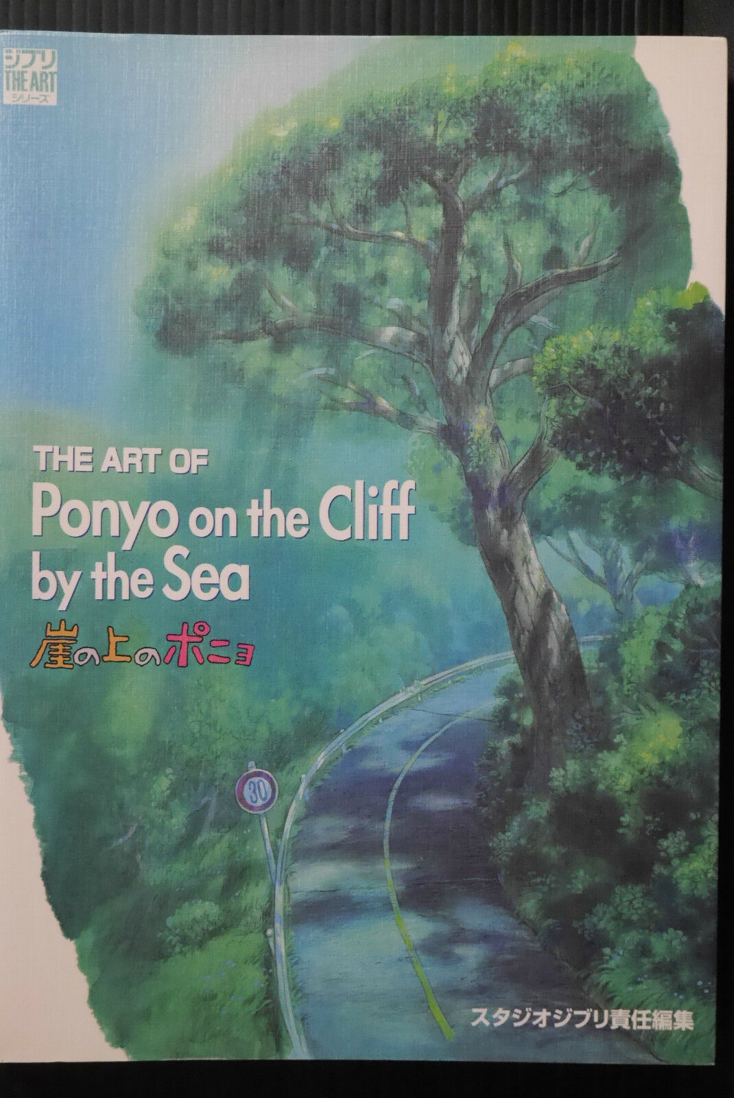 JAPAN Ponyo on Cliff by Sea Hayao Miyazaki book roman album
