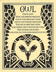 OWL-PRAYER-Shaman-Animal-Spirit-Poster-Art-8-1-2-X-11-NATIVE-AMER-Celtic-Wicca