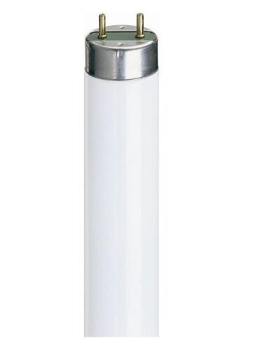 environ 22.86 cm 225 mm boîte de 10 plusieurs réductions T5 6 W 9 in tube fluorescent Just £ 7.99