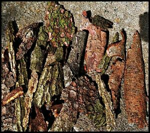 4-5-kg-BAUMRINDE-M-basteln-Borke-Rindenstuecke-Dekomaterial-Floristik