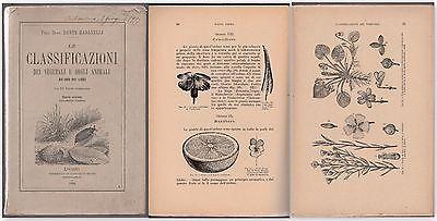 Prof. Dante Badanelli LE CLASSIFICAZIONI DEI VEGETALI E DEGLI ANIMALI 1894