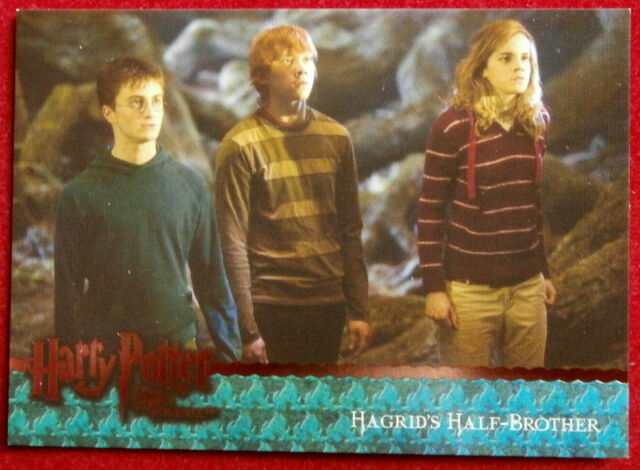 HARRY POTTER ORDER OF THE PHOENIX Card #070 - HAGRID'S HALF-BROTHER, Artbox 2007