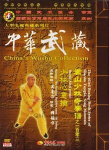 Songshan-Shaolin-Series-Xinyi-fist-by-Wu-Nanfang-DVD