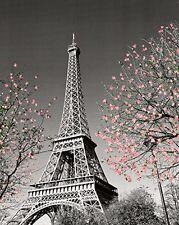design poster EIFFEL TOWER PARIS FRANCE heart CHIC CULTURED collectors 24X36