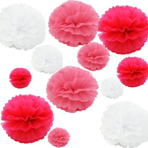 12Pack Mixed Tissue Paper Pompom Pom Poms Hanging Garland Wedding Party Decor