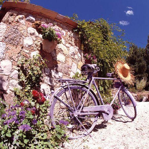 5 servilletas napkins bike en Provence 33 x 33 cm bicicleta muro flores sombrero de paja