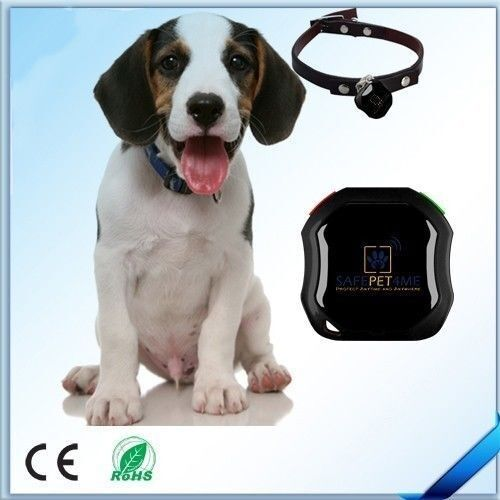 SAFEPET4ME SP4M-18 Waterproof GPS Tracker (GSM GPRS AGPS) Free Free Free App IOS& Android ac25c6