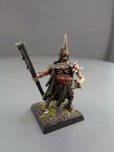 Warhammer-Age-of-Sigmar-Warriors-of-Chaos-Conversion-Sorcerer-Lord-584