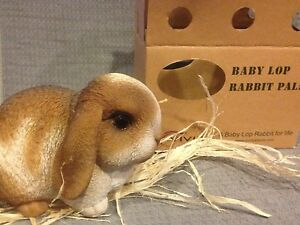 Vivid-Arts-Pet-Pals-Light-Brown-White-Baby-Lop-Bunny-w-Carrier-FREE-US-SHIPPING