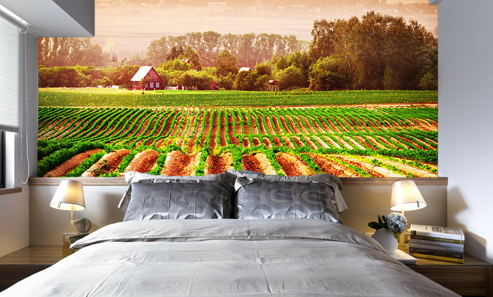 3D Vegetable 56  Wallpaper Murals Wall Print Wallpaper Mural AJ WALL UK Jenny