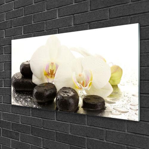 Wandbilder 100x50 Glasbild Druck auf Glas Blumen Steine Kunst