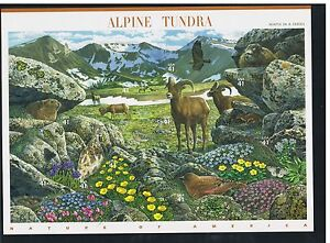 USA - Block Alpine Tundra Naturlandschaften der USA postfrisch - <span itemprop='availableAtOrFrom'> Thüringen, Deutschland</span> - USA - Block Alpine Tundra Naturlandschaften der USA postfrisch -  Thüringen, Deutschland