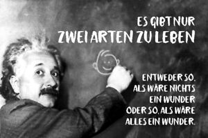 Albert Einstein Table Saying 34 Tin Sign Shield Arched 20 X 30 CM