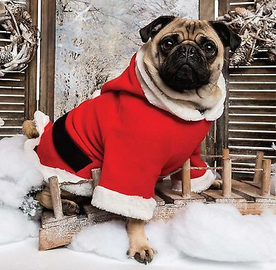 6 x Pug Claus Christmas Cards Pack - Dog Puppy Fast despatch & FREE Post!