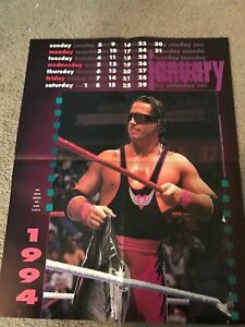 Vintage-WWF-BRET-034-HITMAN-034-HART-Poster-1994-1990s-WCW-WWE-RARE