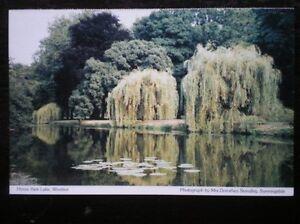 POSTCARD BERKSHIRE WINDSOR  HOME PARK LAKE - Tadley, United Kingdom - POSTCARD BERKSHIRE WINDSOR  HOME PARK LAKE - Tadley, United Kingdom