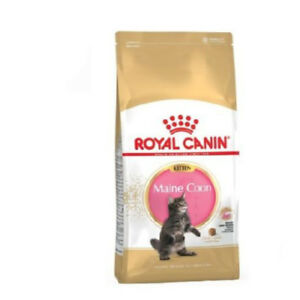 Nourriture Pour Chatons Maine Coon (jusqu'à 15 Mois) Royal Canin Kitten
