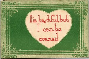 I-039-m-Bashful-But-I-Can-Be-Coaxed-c1910-Vintage-Postcard-L19