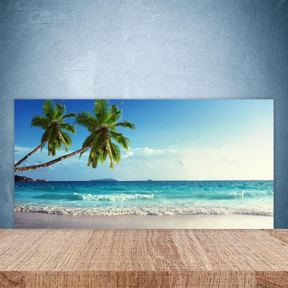 Crédence de cuisine en verre Panneau Paroi 100x50 Paysage Palm Beach Sea