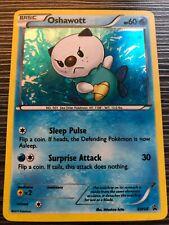 Oshawott BW03 BW Black /& White PROMO RARE HOLO Shiny Pokemon Card Near Mint