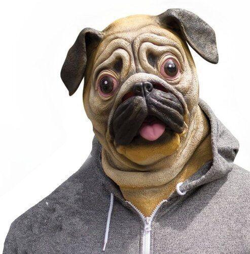 Deluxe Pug Mask Dog Lover Pooch Halloween Costume Latex Adult Gag Gift Novelty