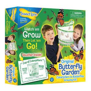 Butterfly-Garden-Set-Raupen-werden-Schmetterlinge-inkl-Gutschein-insect-lore