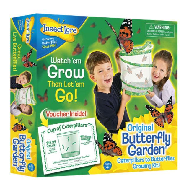 Butterfly Garden Set,Raupen werden Schmetterlinge inkl.Gutschein  insect lore