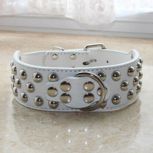 """2/"""" Wide Leather Studded Dog Collar for Large Dog Pitbull Terrier Sizes S M L XL"""