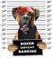 Boxer Mug Shot Tote