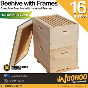 16 Frame Double Beehive 16 x Frames Brood Bee Box NZ Pine Bee Hive Honey Bee